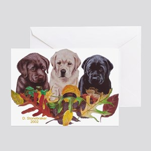 Autumn Colors Lab Greeting Cards  (6)