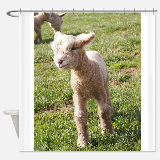 Brave Baby Shower Curtain