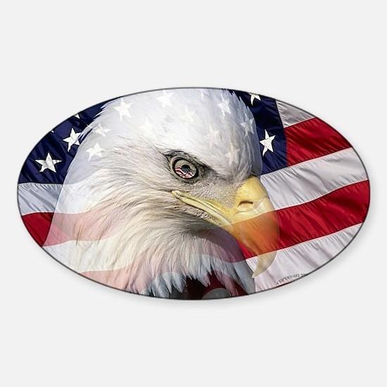 American Pride Sticker (Oval)
