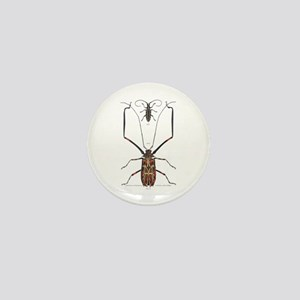 Brazil Beetle Insects Mini Button