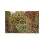 Fall Day Photography Rectangle Magnet