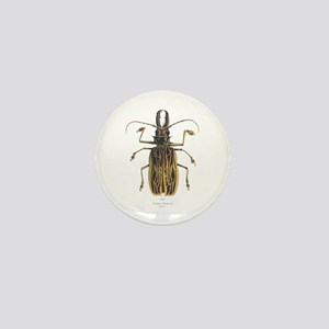 Brazilian Prionus Beetle Mini Button
