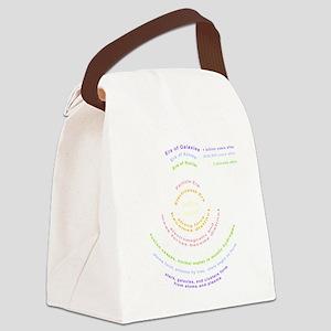 Big Bang Theory Canvas Lunch Bag