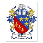 Johns Coat of Arms Small Poster