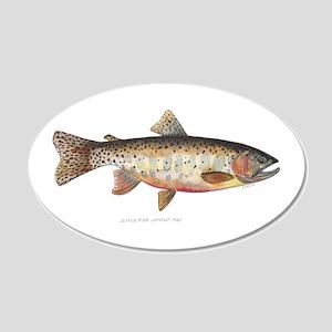 Colorado River Cutthroat Trout 20x12 Oval Wall Dec