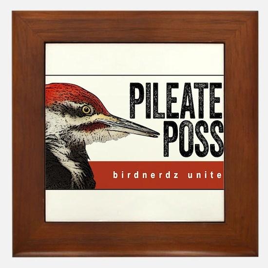 Pileated Posse Framed Tile
