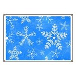 Blue and White Snowflake Pattern Banner