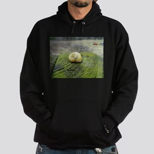 Yellow Snail Shell Sweatshirt