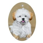 Lhasa Apso Oval Ornament