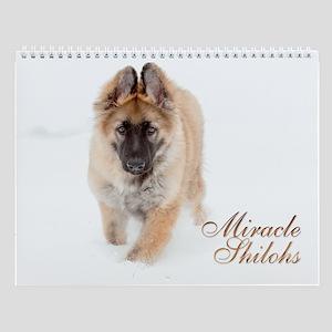 Miracle Shilohs 2013 Wall Calendar