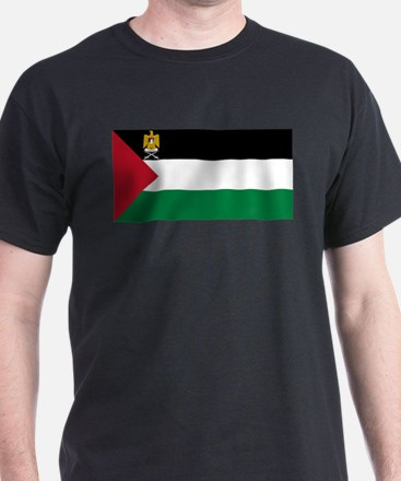 Palestine - State Flag - Current T-Shirt