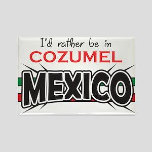 Cozumel Mexico Rectangle Magnet