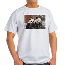 Pandas Eating Light T-Shirt
