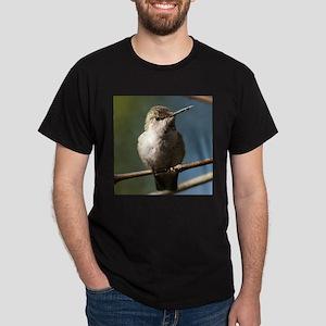 Annas Hummingbird Dark T-Shirt
