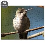 Annas Hummingbird Puzzle