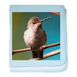 Annas Hummingbird baby blanket