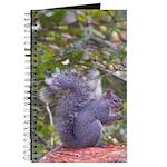 Western Gray Squirrel Journal