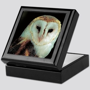 Barn Owl Keepsake Box