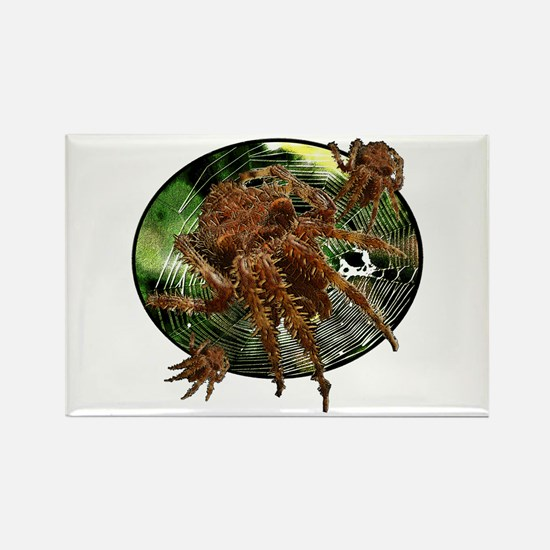 Cat face spider Rectangle Magnet