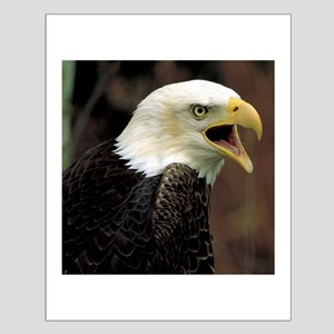 Voiceful Bald Eagle Small Poster