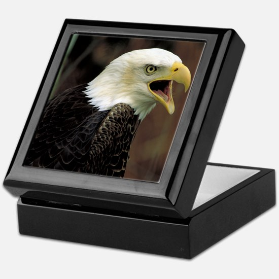 Voiceful Bald Eagle Keepsake Box