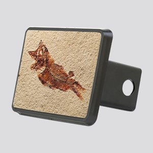 Fossilised fish - Hitch Cover
