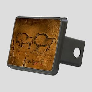 Stone-age cave paintings, Asturias, Spain - Hitch