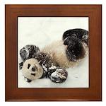 Panda Rolling In Snow Framed Tile