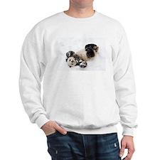 Panda Rolling In Snow Sweatshirt