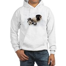 Panda Rolling In Snow Hooded Sweatshirt