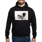 Panda Rolling In Snow Hoodie (dark)