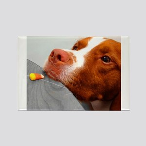 Candy corn dog Rectangle Magnet