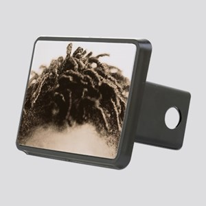 Hair - Hitch Cover