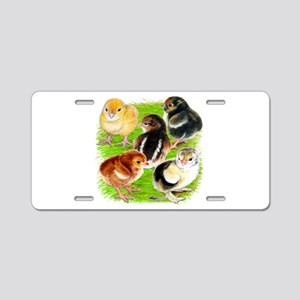Five Chicks Aluminum License Plate