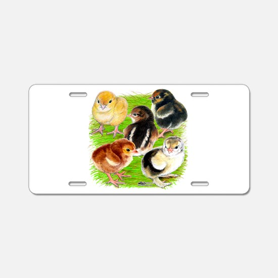 Five Chicks Aluminum License Plate