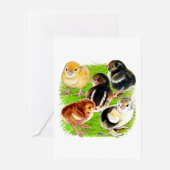 Five Chicks Greeting Card
