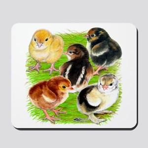 Five Chicks Mousepad