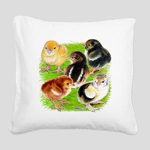 Five Chicks Square Canvas Pillow