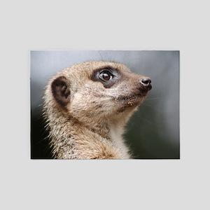 Meerkat Searching the Skies 5'x7'Area Rug