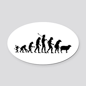 Modern Evolution Oval Car Magnet