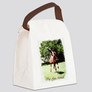 Ive Got Attitude Canvas Lunch Bag