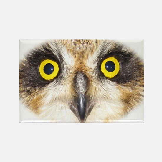 Unique Bright eyes in tree owl Rectangle Magnet (10 pack)