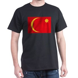 Saudi Arabia - Flag of Ha'il - 1835-1920 T-Shirt