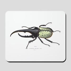 Scarab Hercules Beetle Mousepad