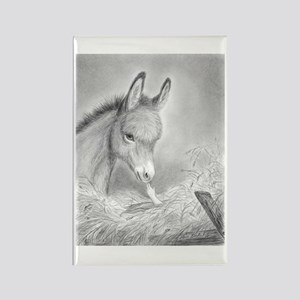 Baby Jesus Blessing Donkey ~ Rectangle Magnet