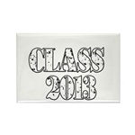 CLASS2013 Rectangle Magnet (100 pack)