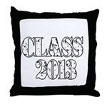 CLASS2013 Throw Pillow