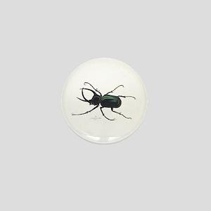 Scarab Atlas Beetle Mini Button
