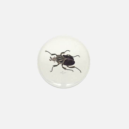 Goliath Beetle Mini Button