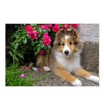 Puppy in the Roses Postcards (Package of 8)